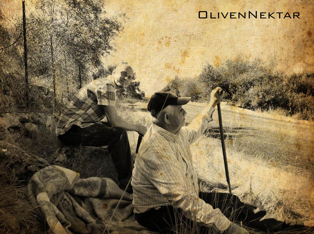 Bild auf olivenHain